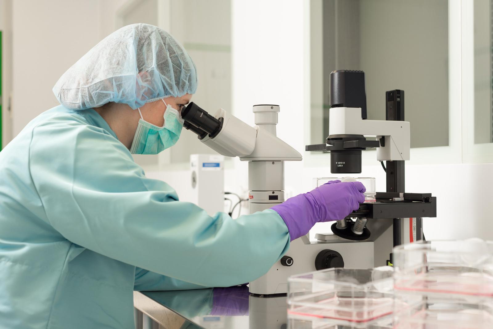 mikroskopická kontrola kultivovaných buněk