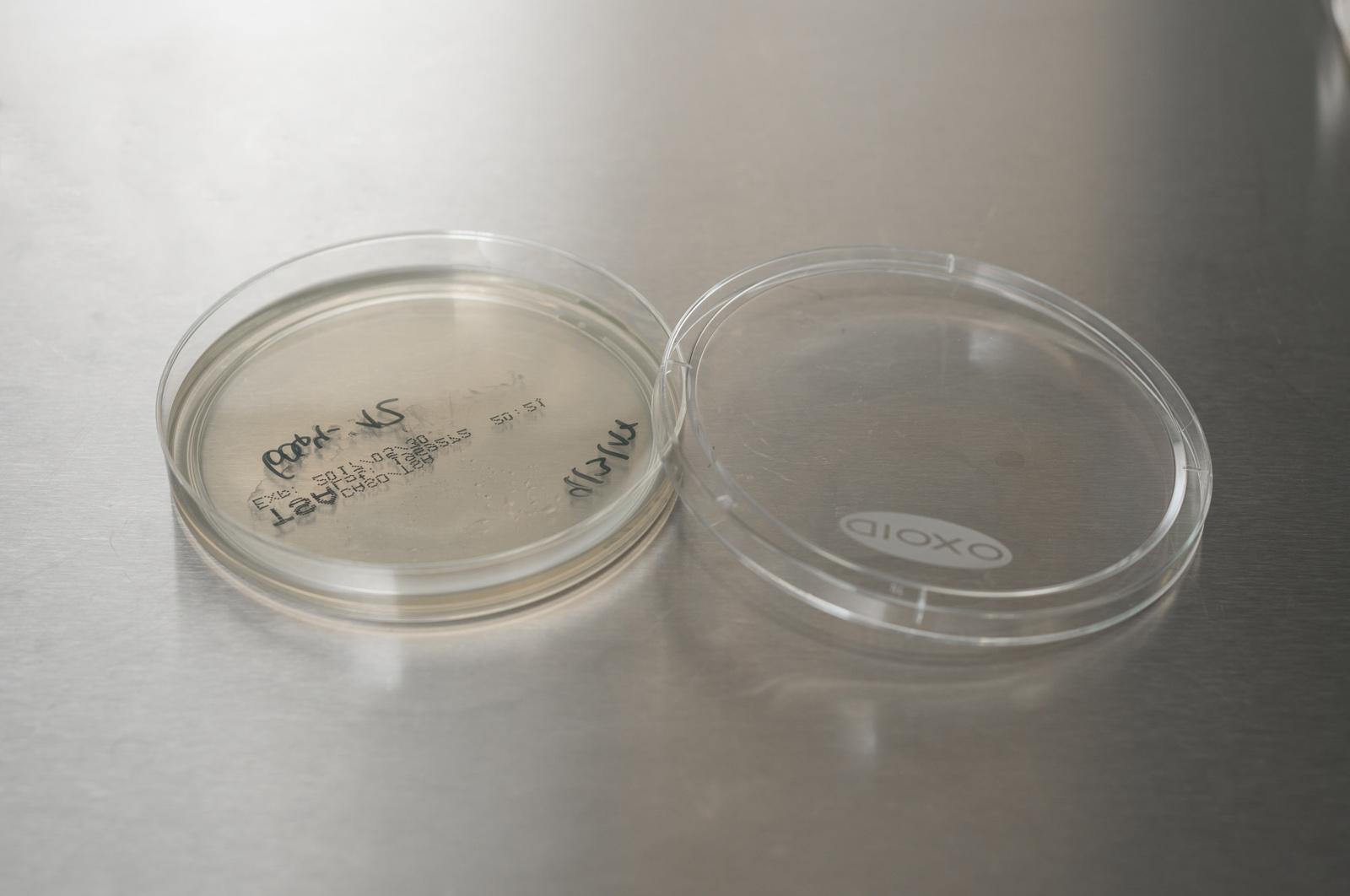 monitorování sterility prostředí