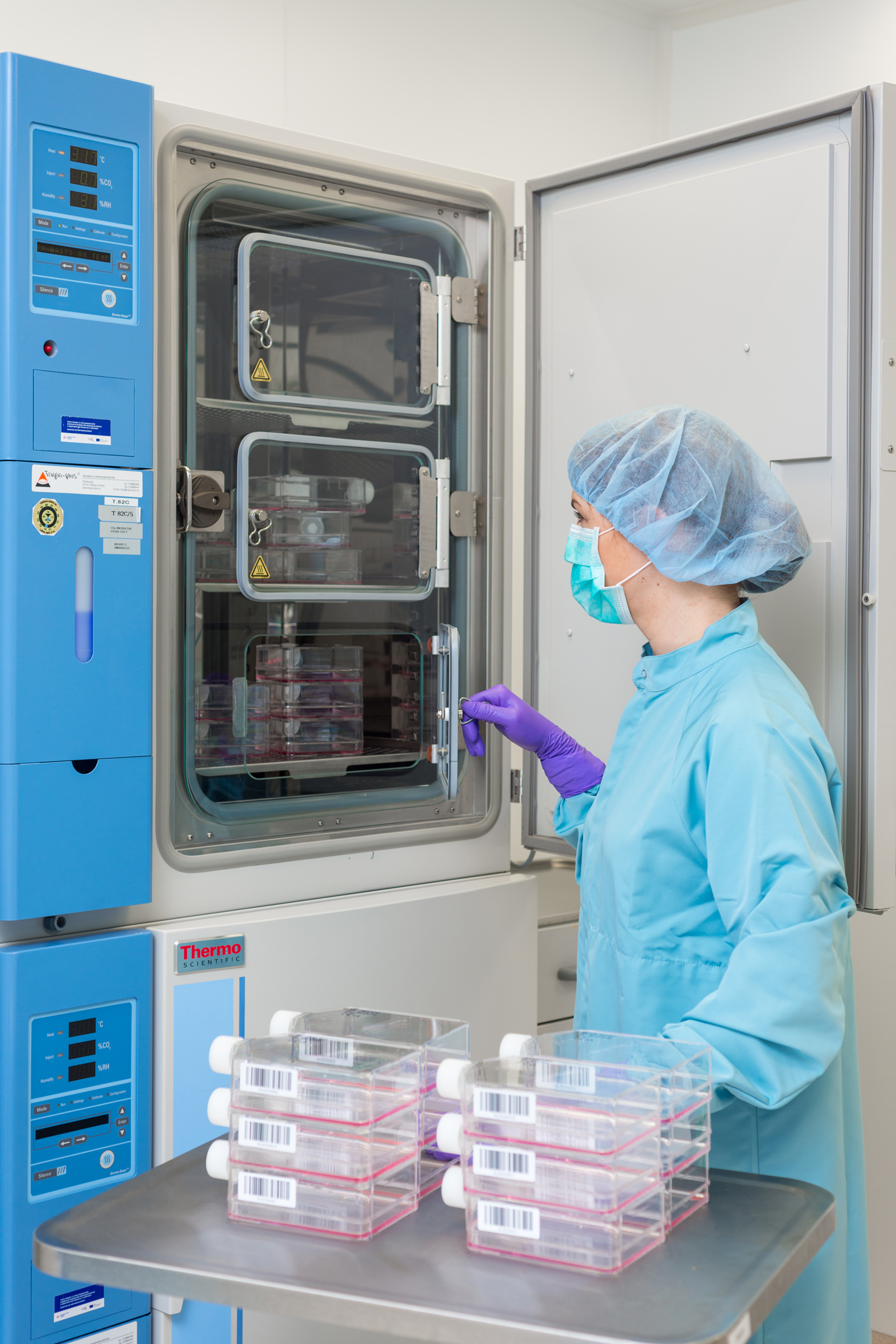 přesun kult lahvi do inkubatoru